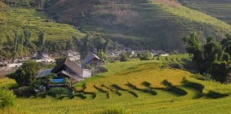 chill-asian-budget-travel-destination-sapa-vietnam