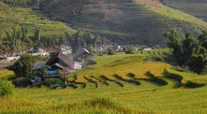 chill-asian-budget-travel-destination-sapa-vietnam
