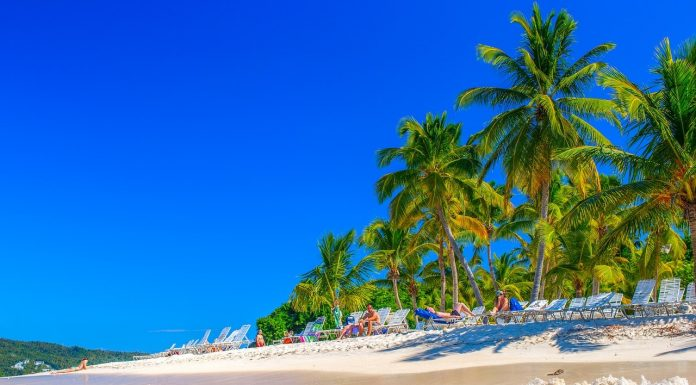 Vibrant beach of Cayo Leventado for family friendly resorts in Dominican Republic