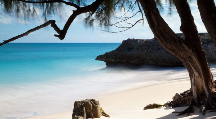 An incredible white sand beach in Barbados